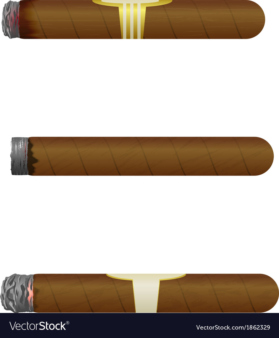 Set of Cuban cigars Isolate on white background vector image