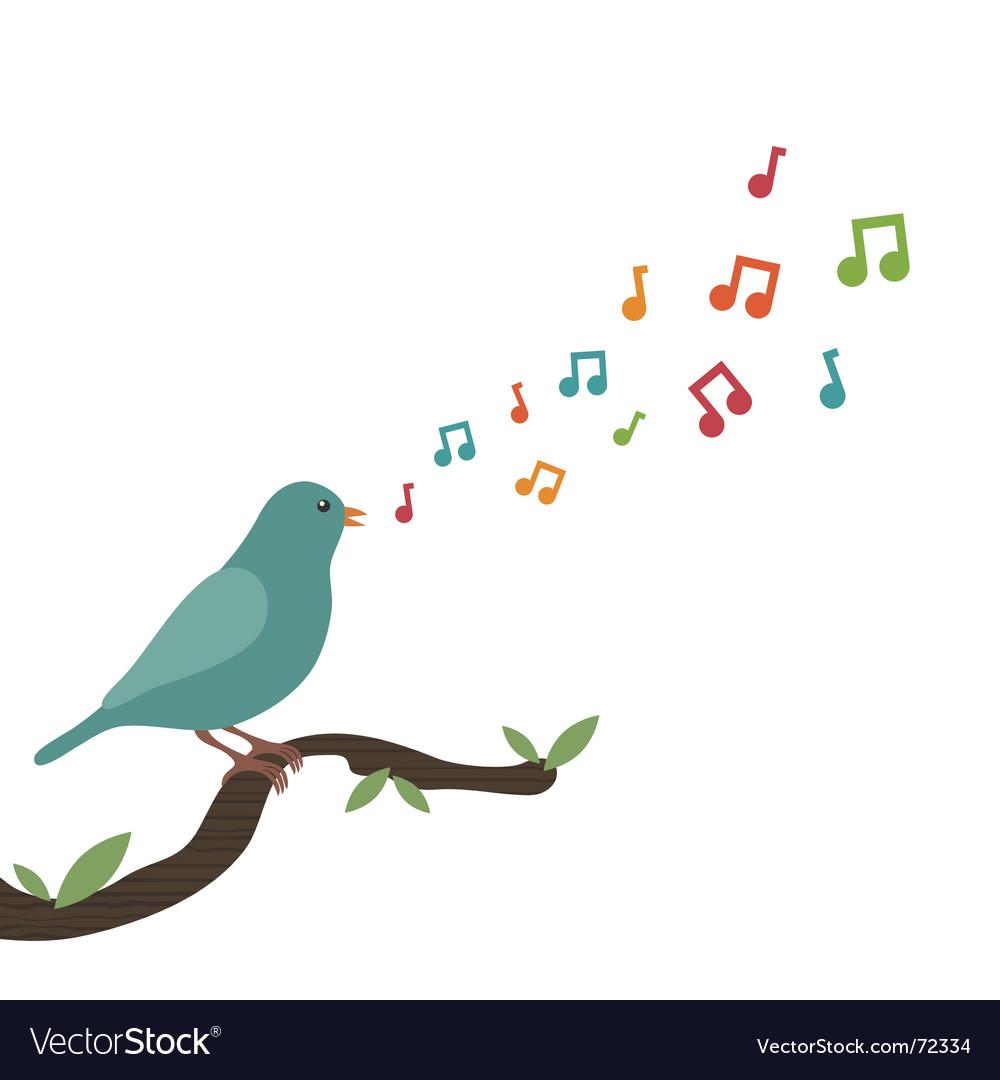 Song Bird Drawings
