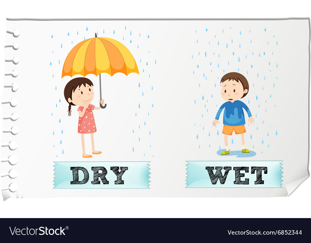Opposite adjectives dry and wet vector image