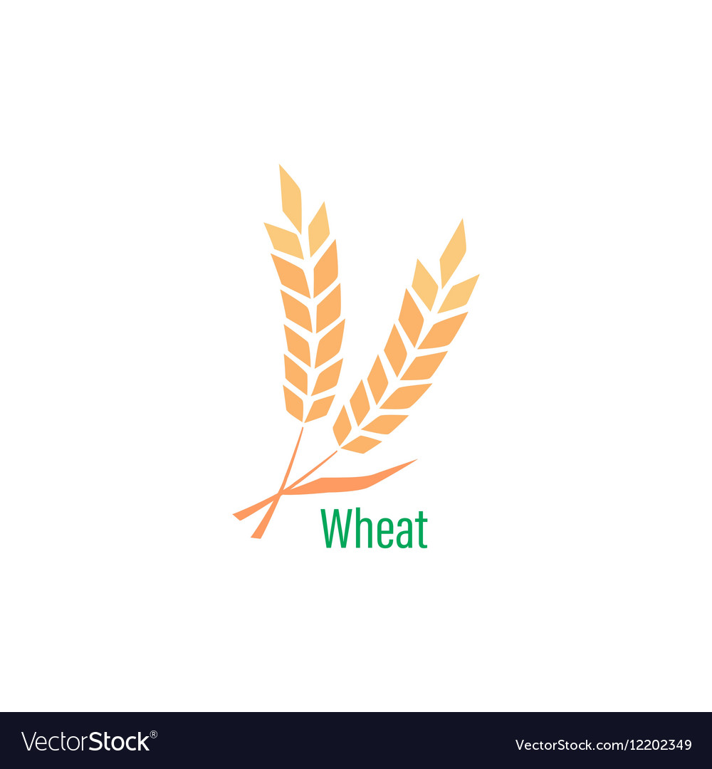 Logotype template with wheat