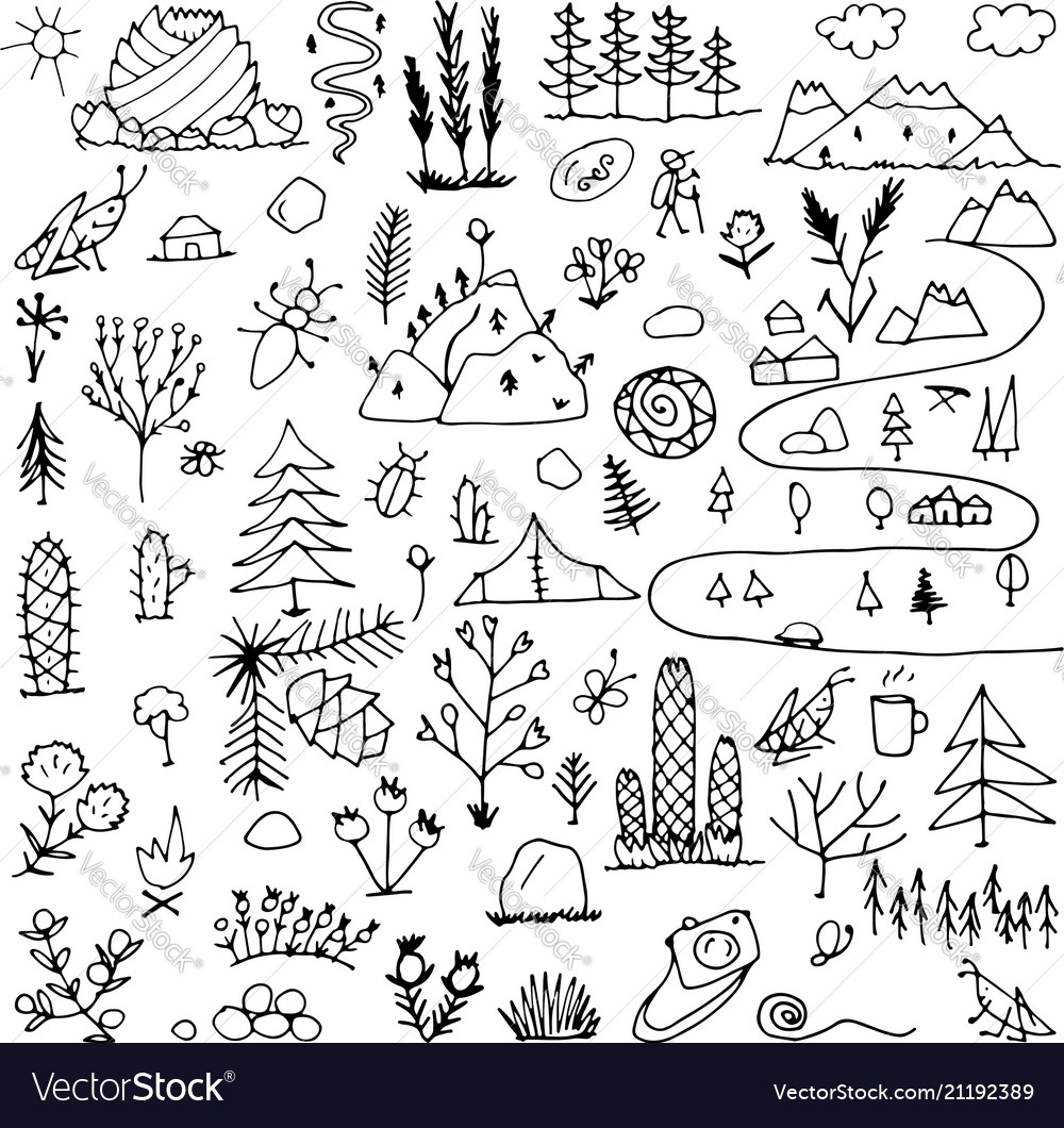 Wild field nature background for your design