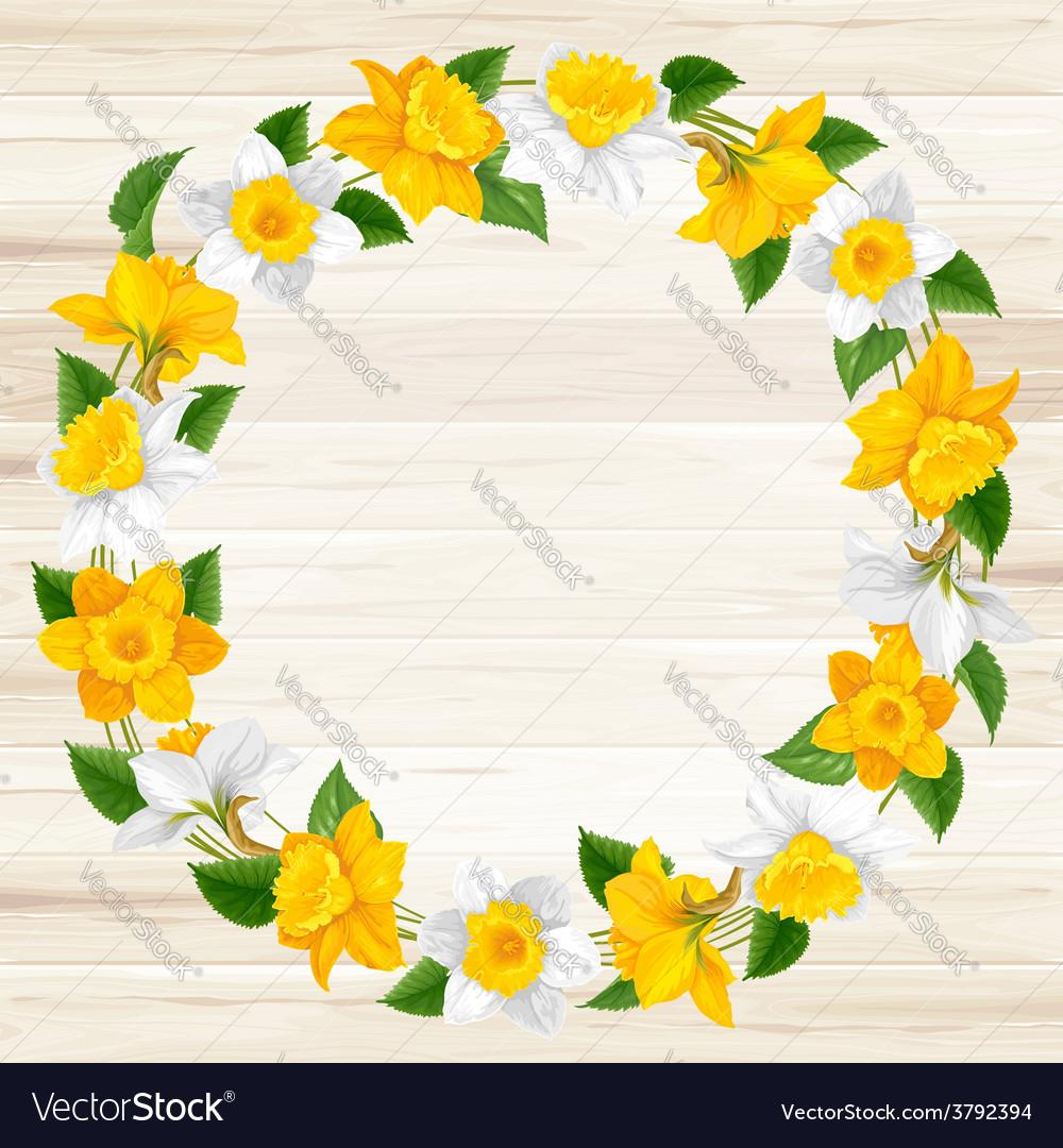 Daffodils frame