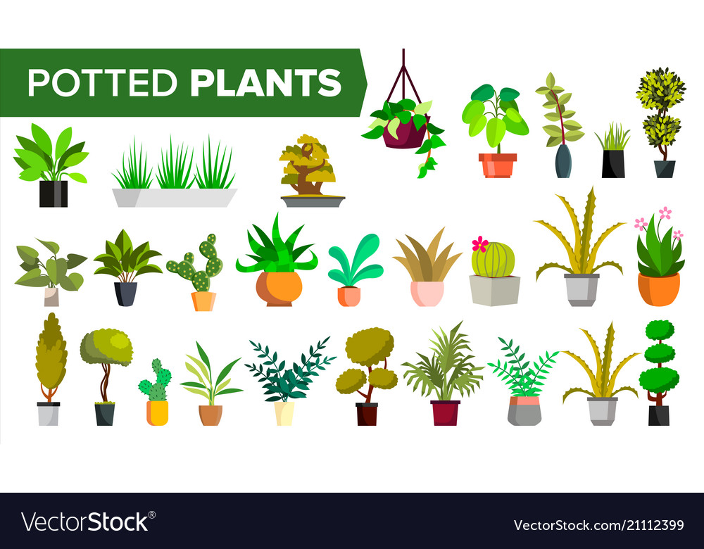 Potted plants set green color plants in