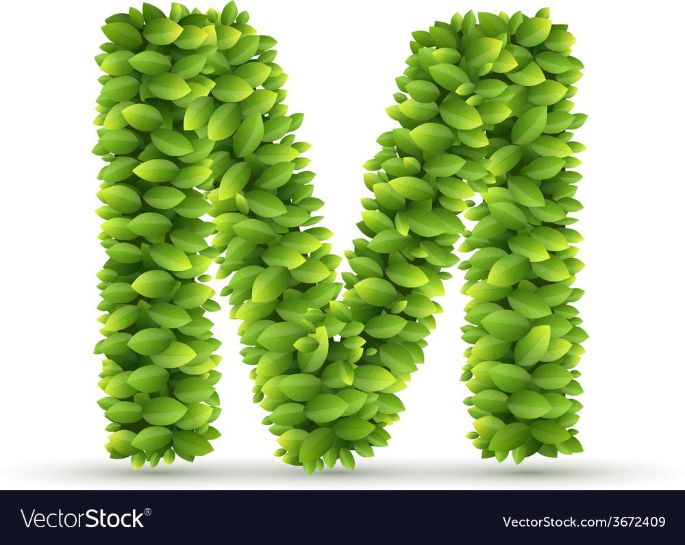 Letter M alphabet of green leaves