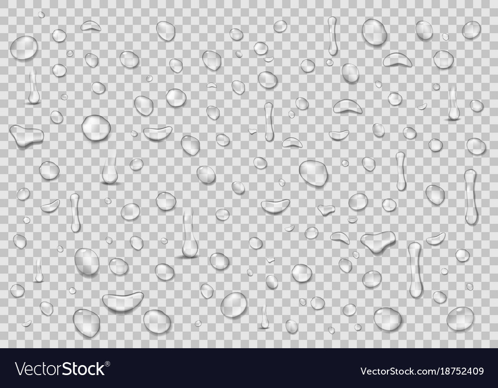 water drops transparent background clean drop vector image
