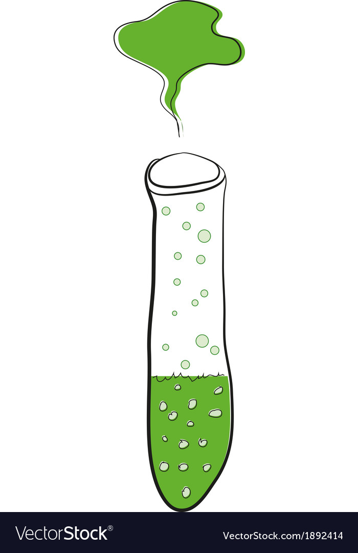 Test tube with green liquid vector image