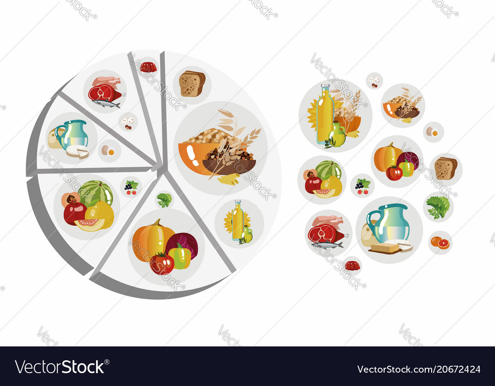 Food Pyramid Of Pie Chart Royalty Free Vector Image