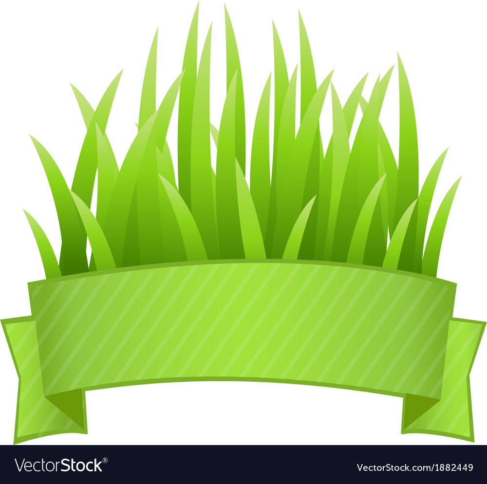 Grass Banner vector image
