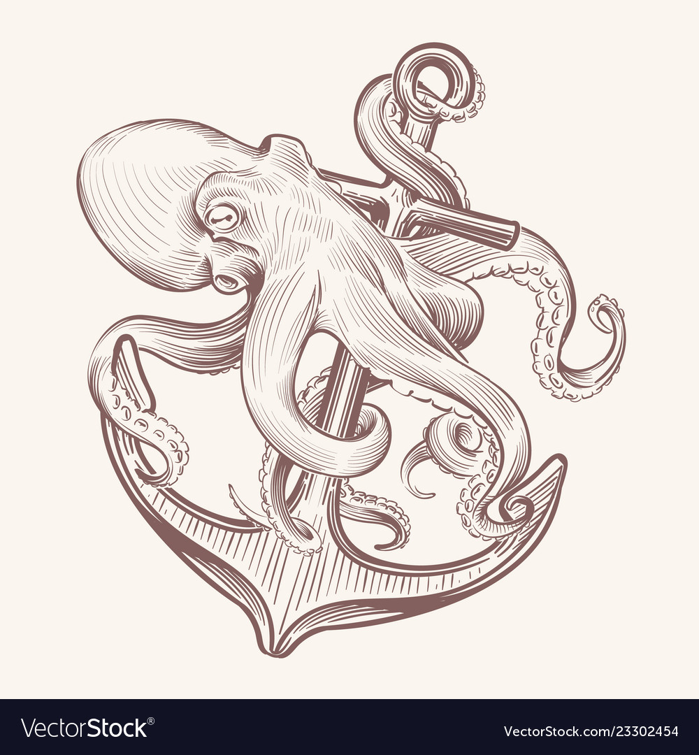 Octopus with anchor sketch sea kraken squid