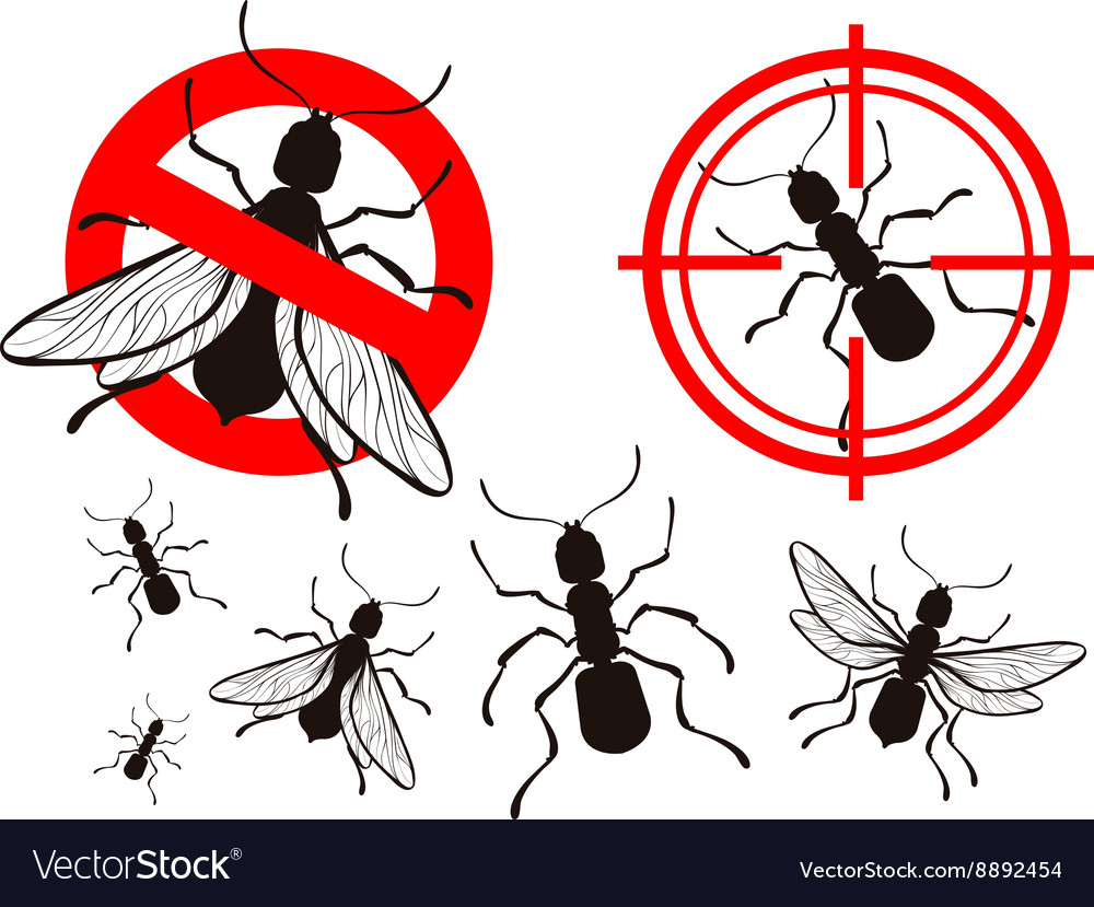 Termite Or Ant Pest Control Icons Set Royalty Free Vector