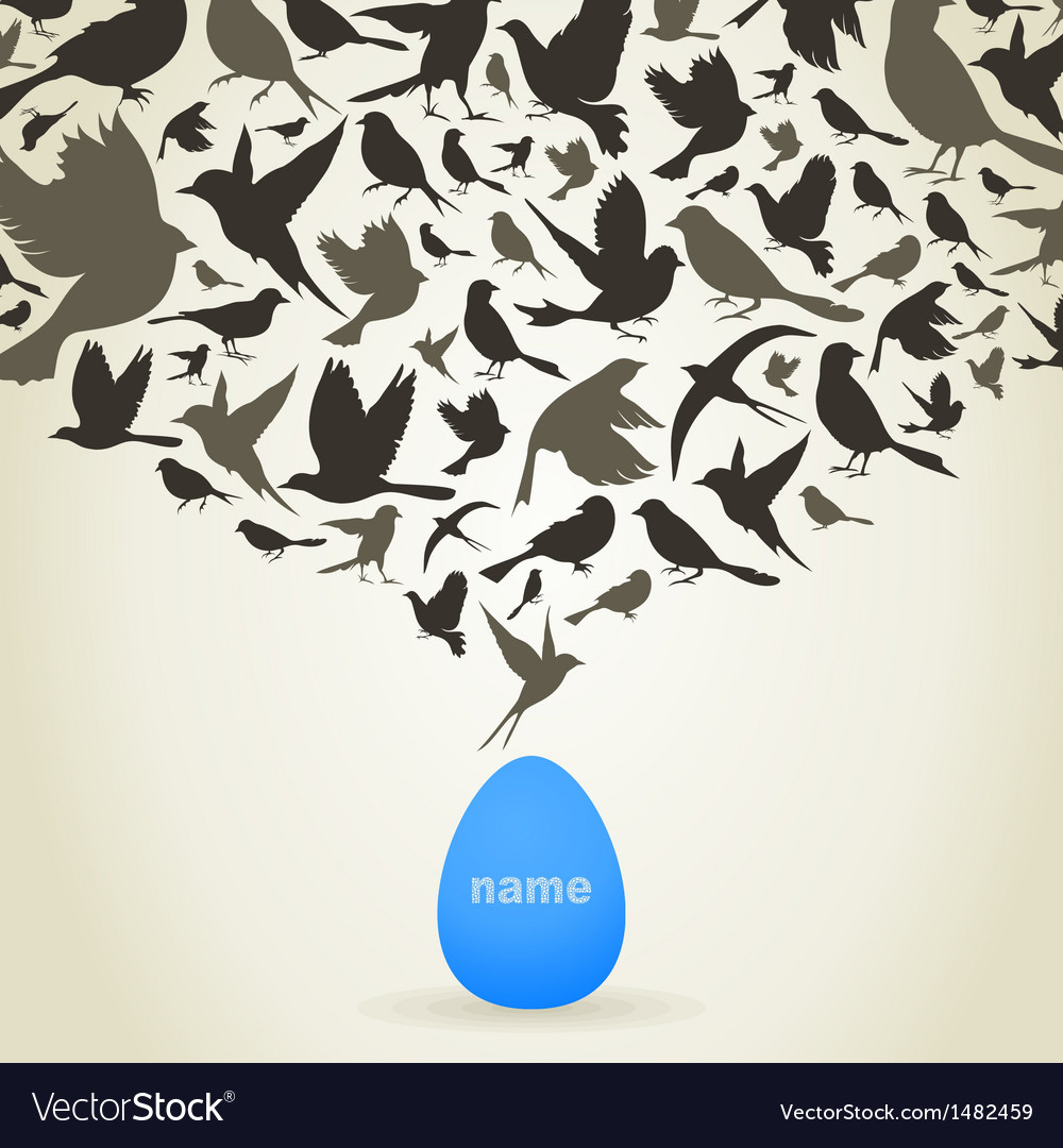 Birds from egg vector image
