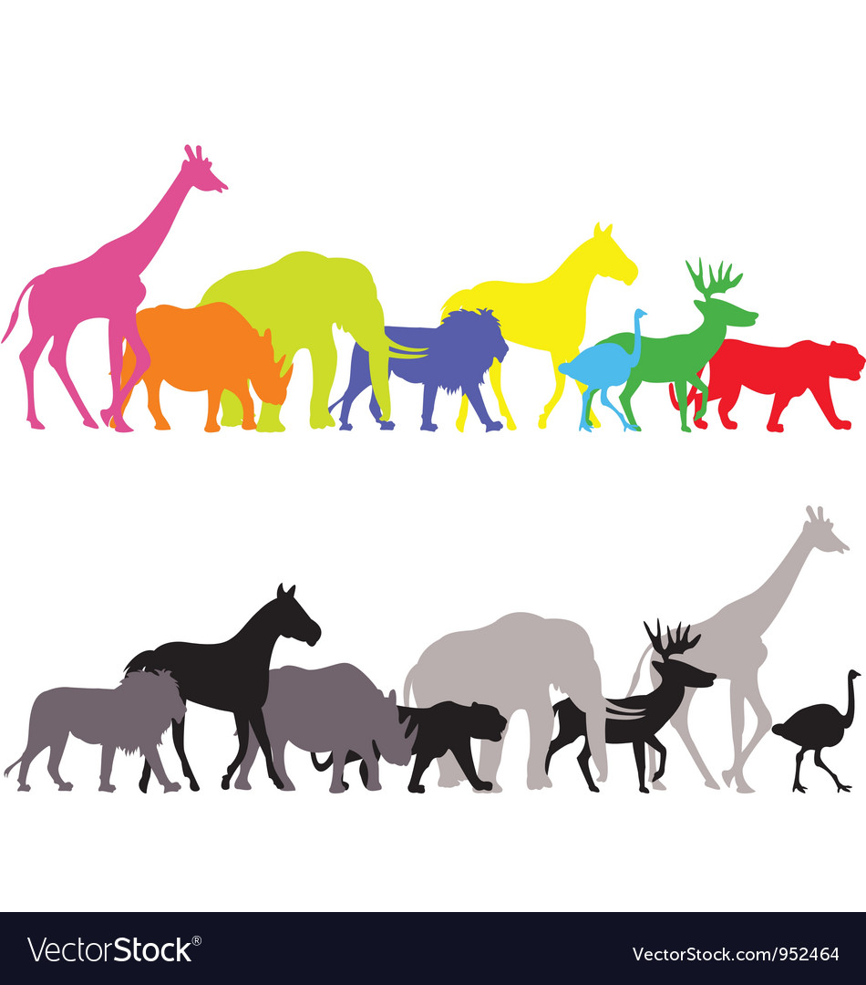 Wild animal silhouette vector image