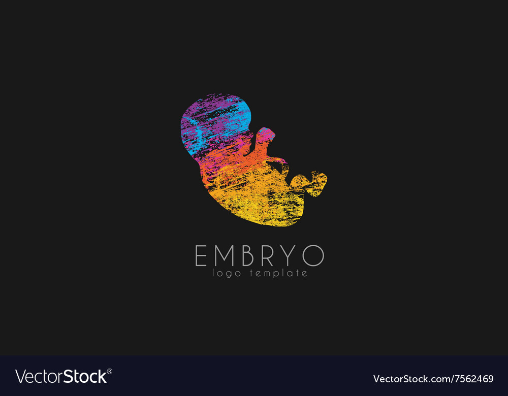 Embryo logo design Silhouette of embryo baby in
