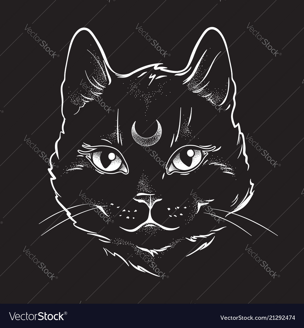 Gothic black cat with moon on his forehead