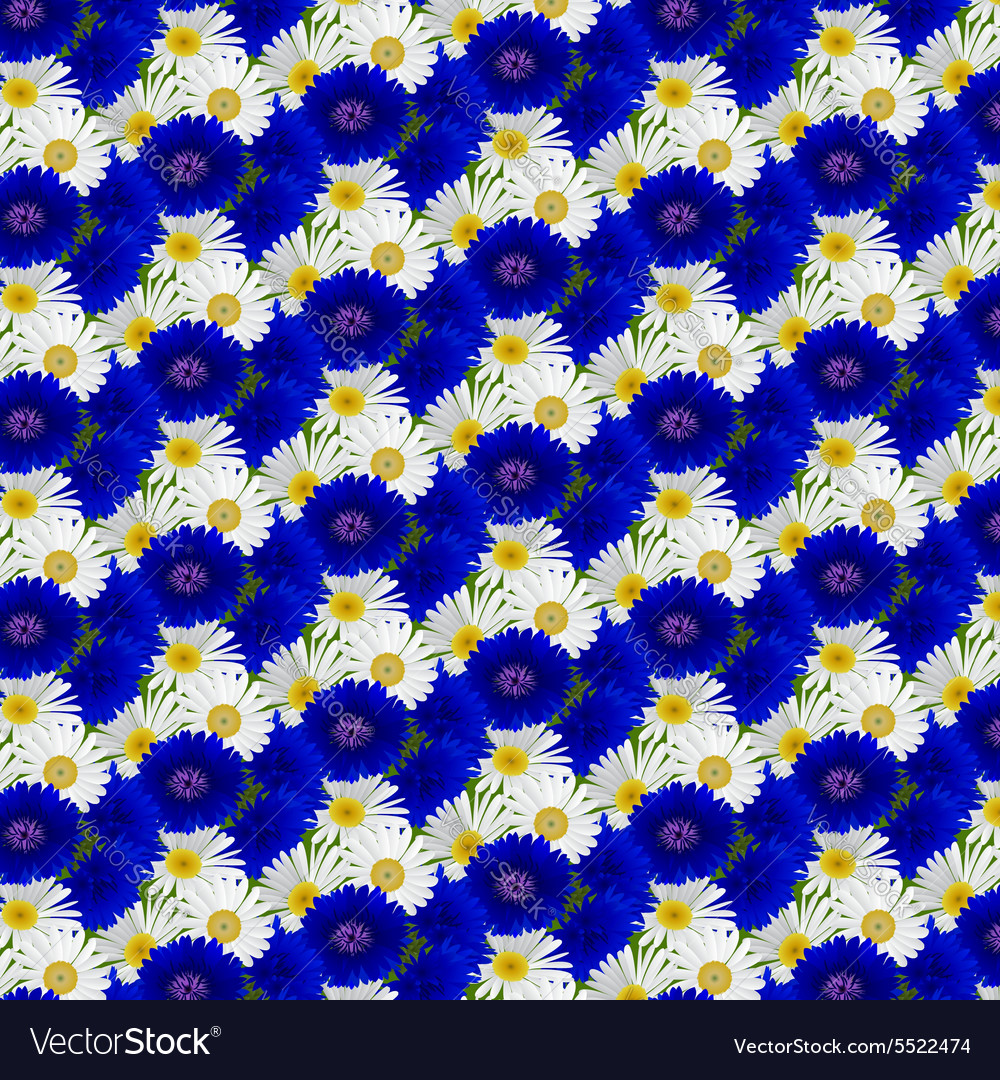 Seamless pattern with flowers camomile