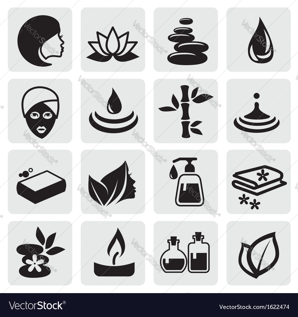 Spa icons set vector image
