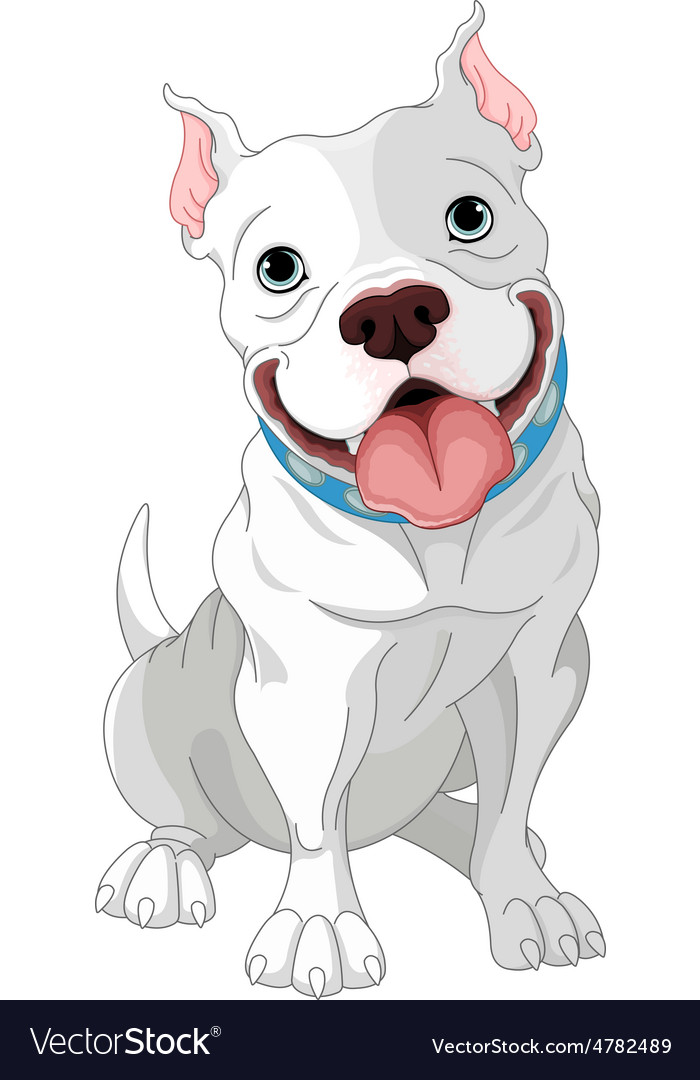 Pit-Bull vector image