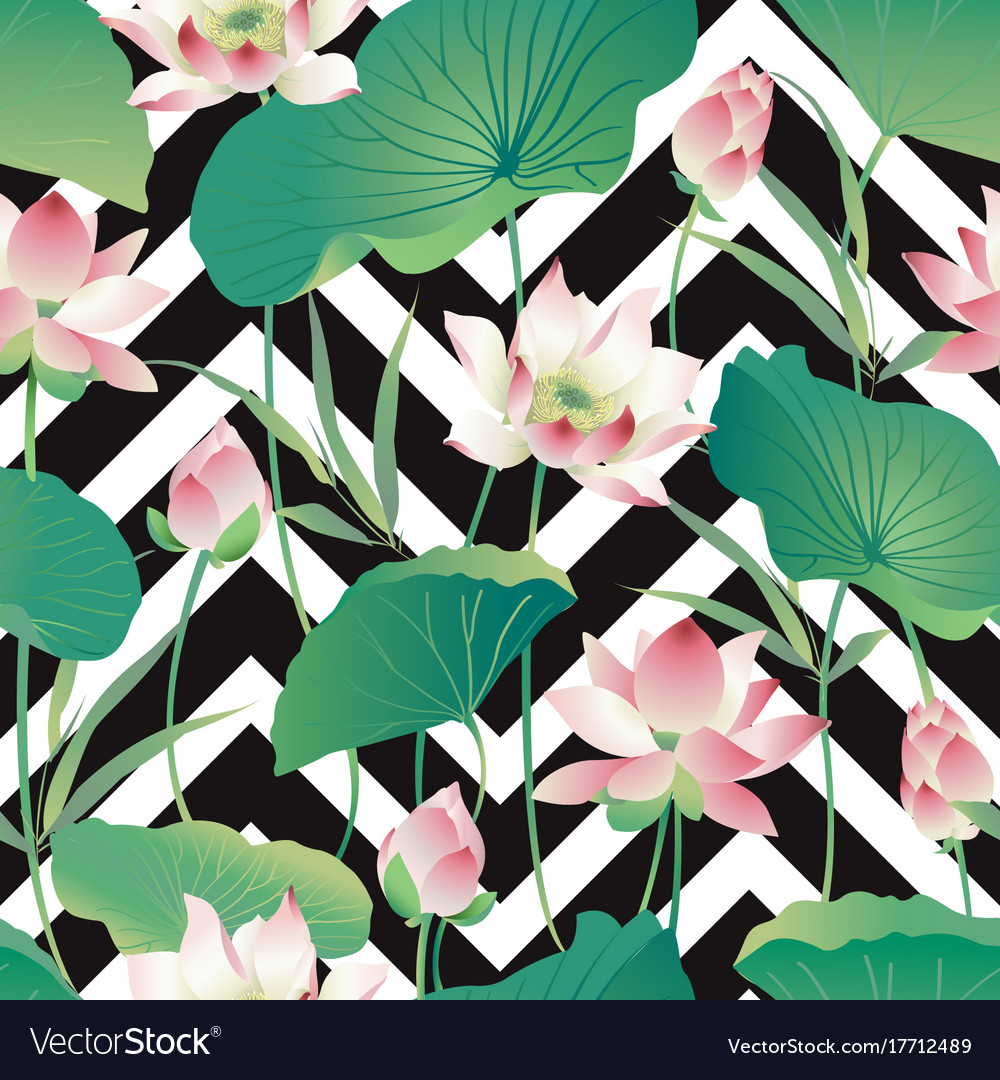 Seamless Pattern Lotus Flowers And Leaves W Vector Image