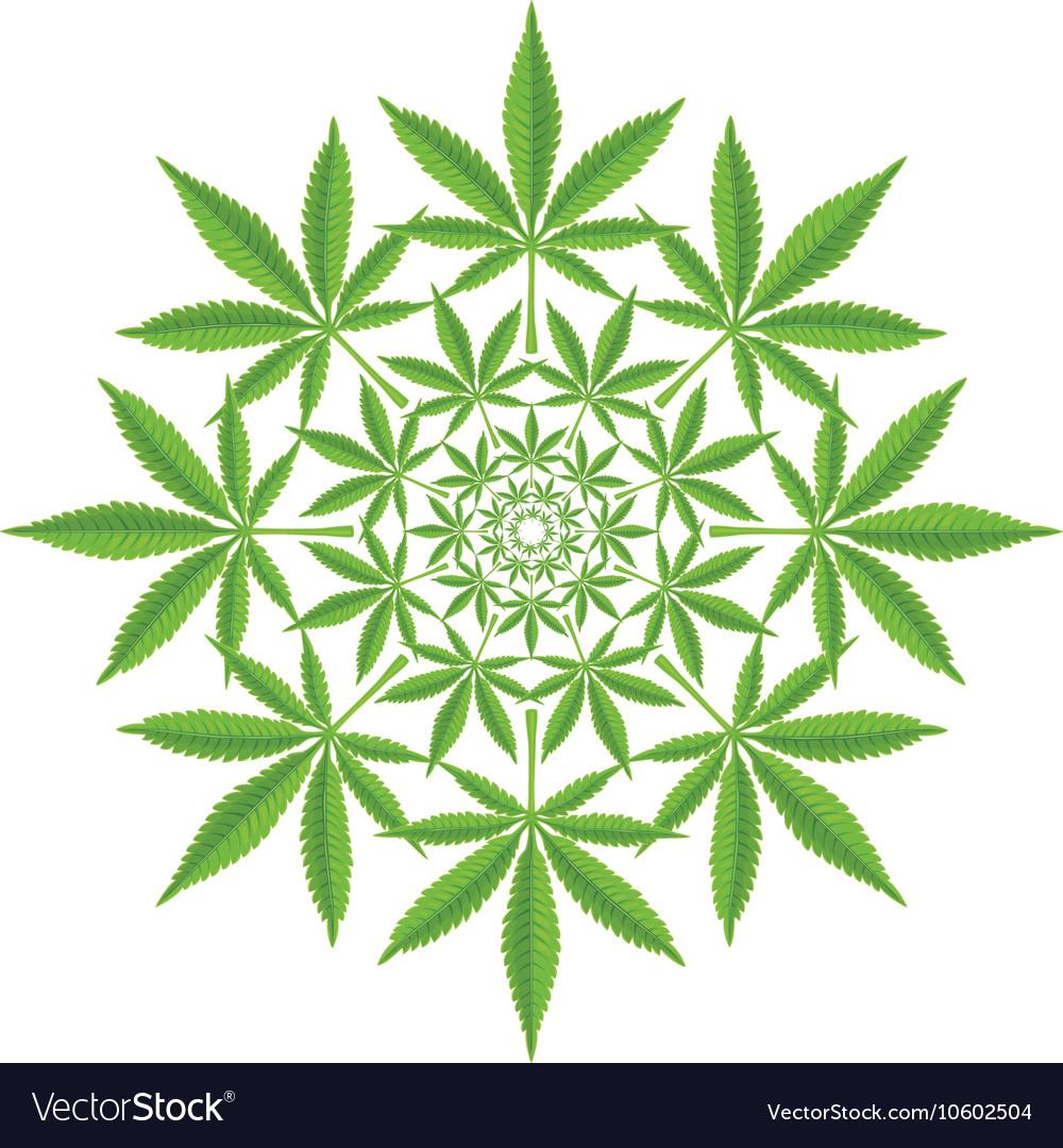 Round pattern from cannabis leaf