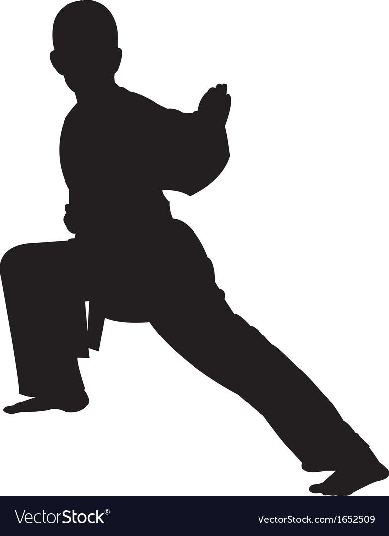 Karate boy silhouette
