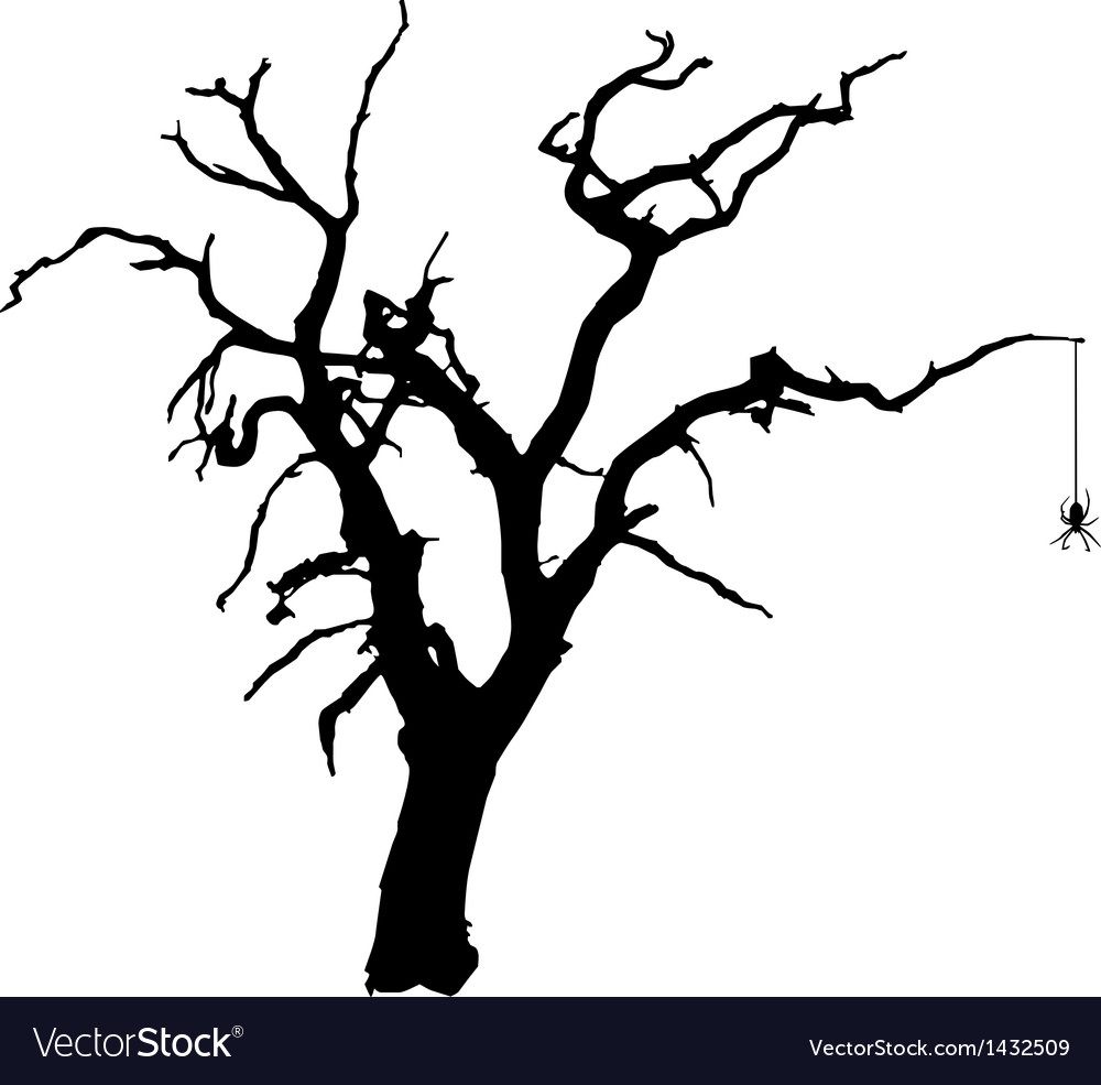 spooky tree with spider royalty free vector image