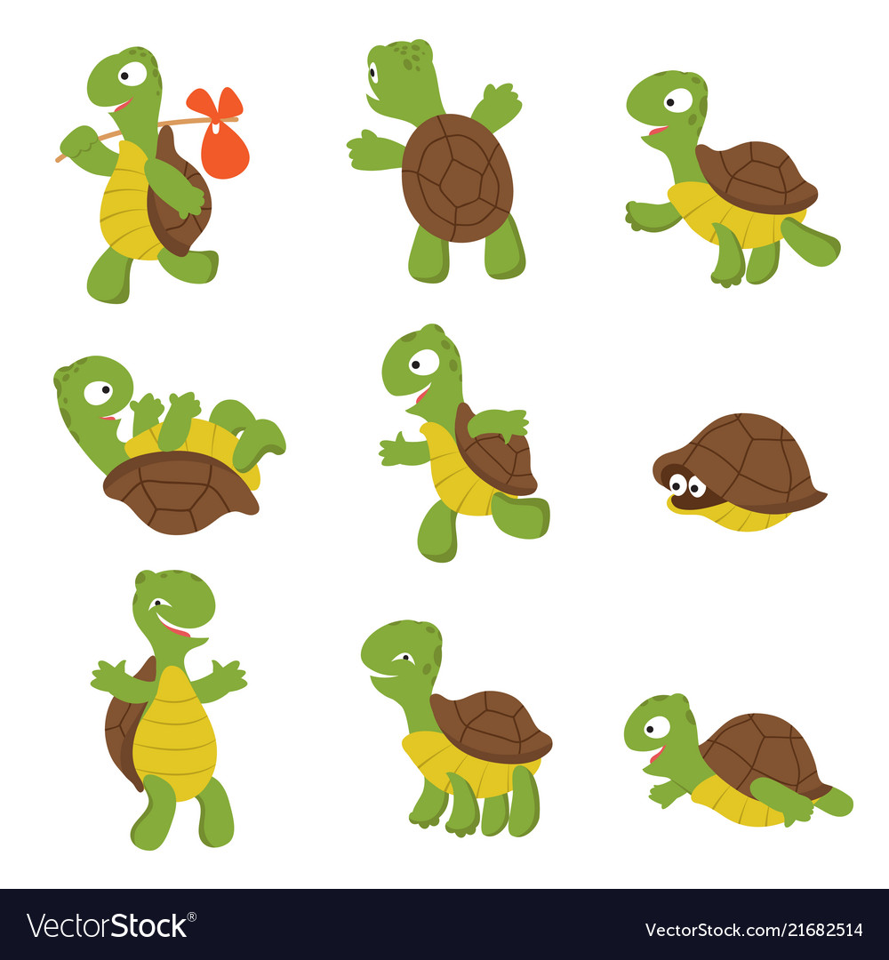 Cartoon turtle cute tortoise wild animal