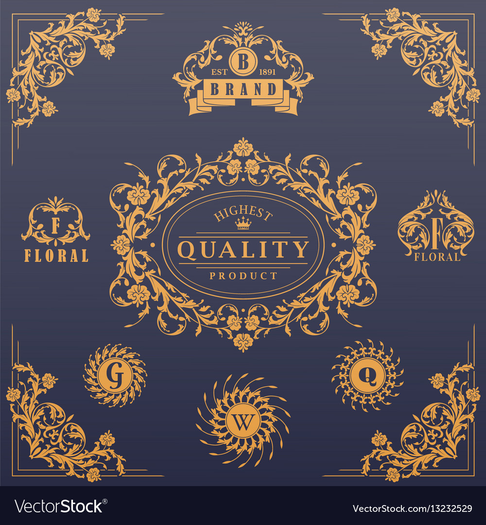 Calligraphic design elements collection vector image