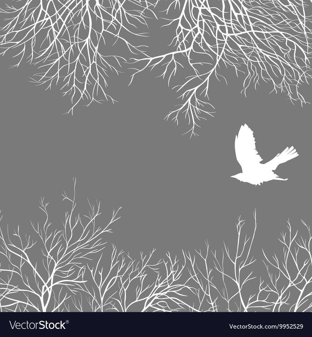 Crow and tree