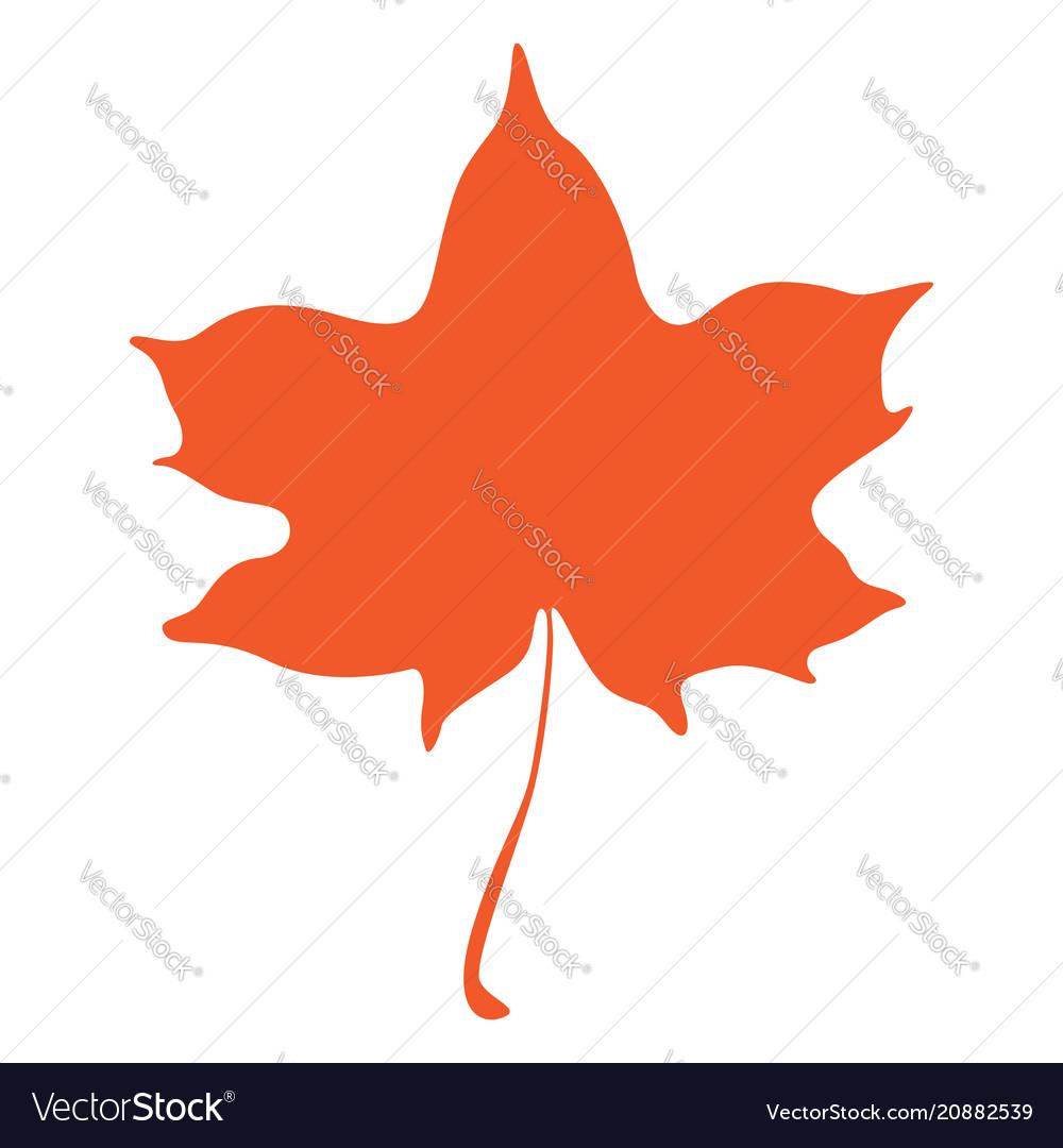 Orange maple leaf isolated on white background