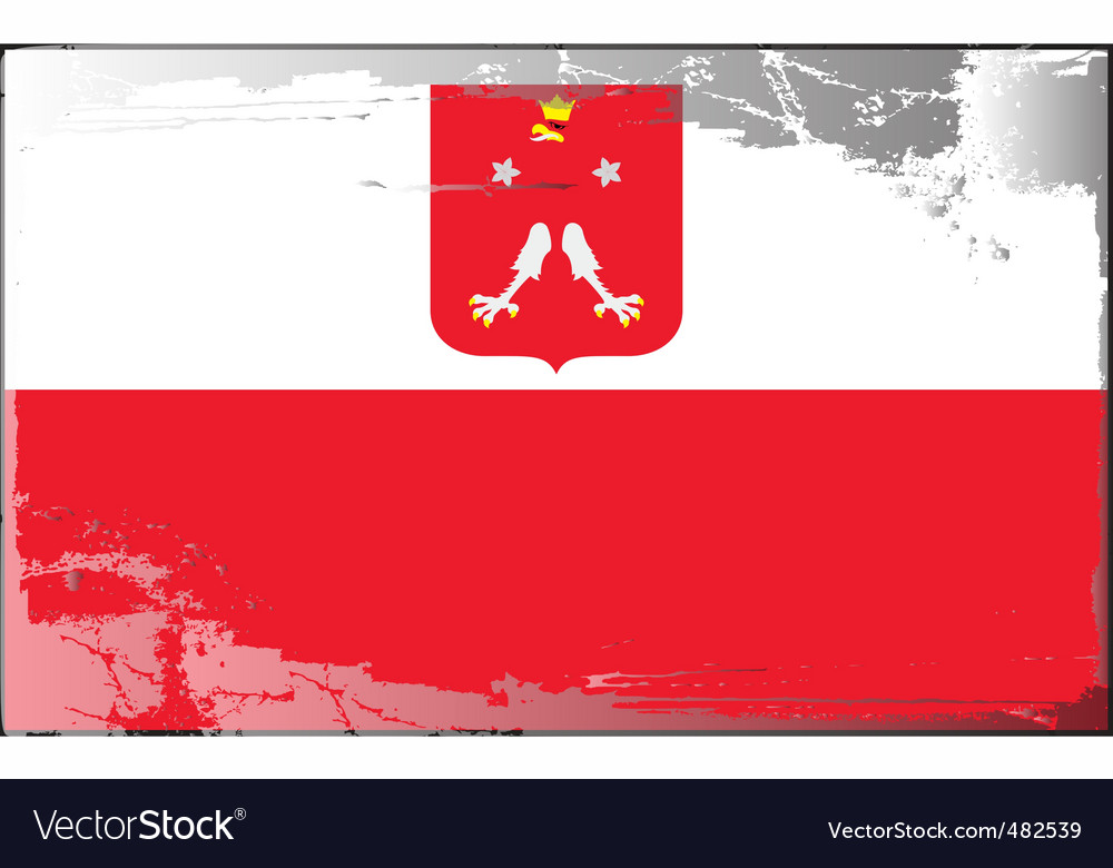 poland national flag royalty free vector image