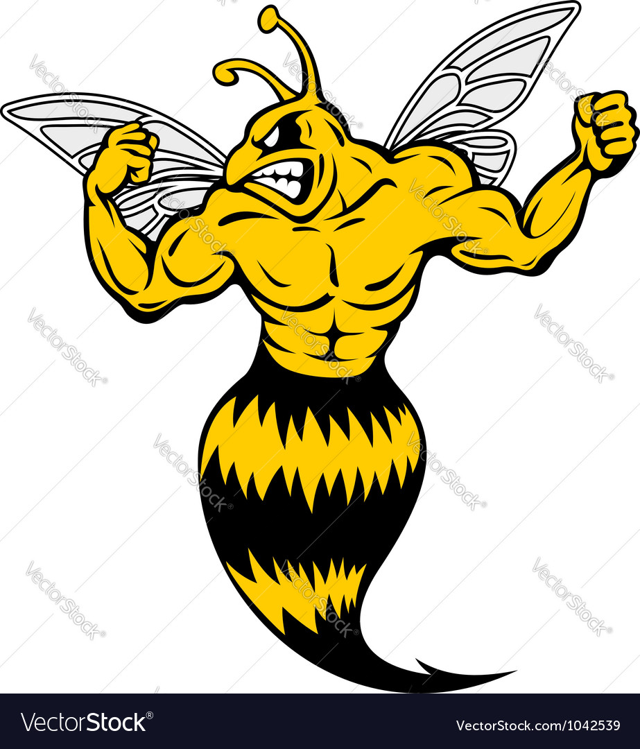 Powerful and danger yellow jacket vector image