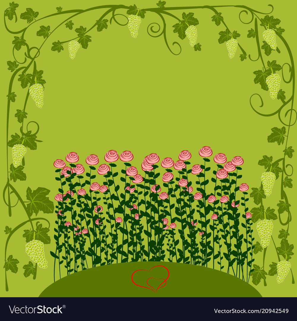 Floral background for valentine day grape roses