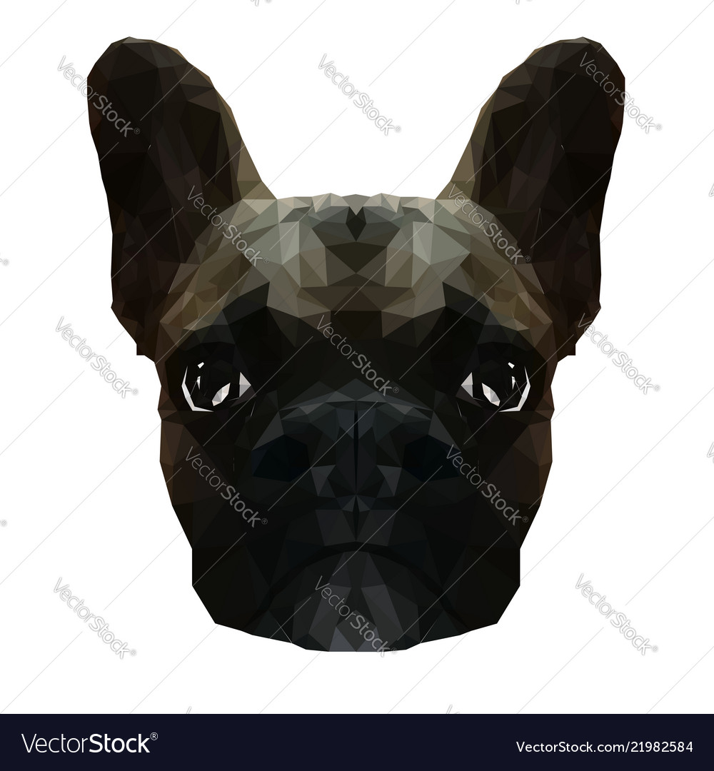 French bulldog in low poly