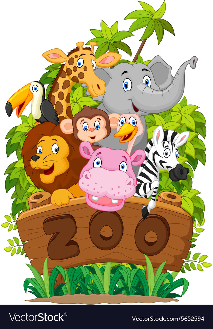 collection of zoo animals on white background vector image