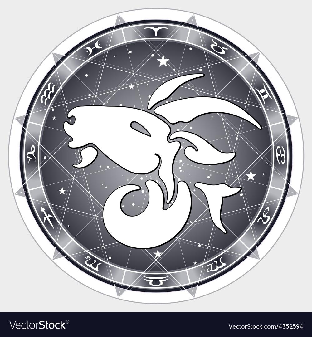 Zodiac sign Capricorn