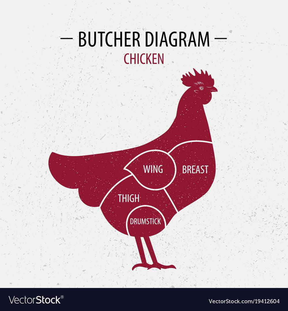 rooster diagram   Diagram