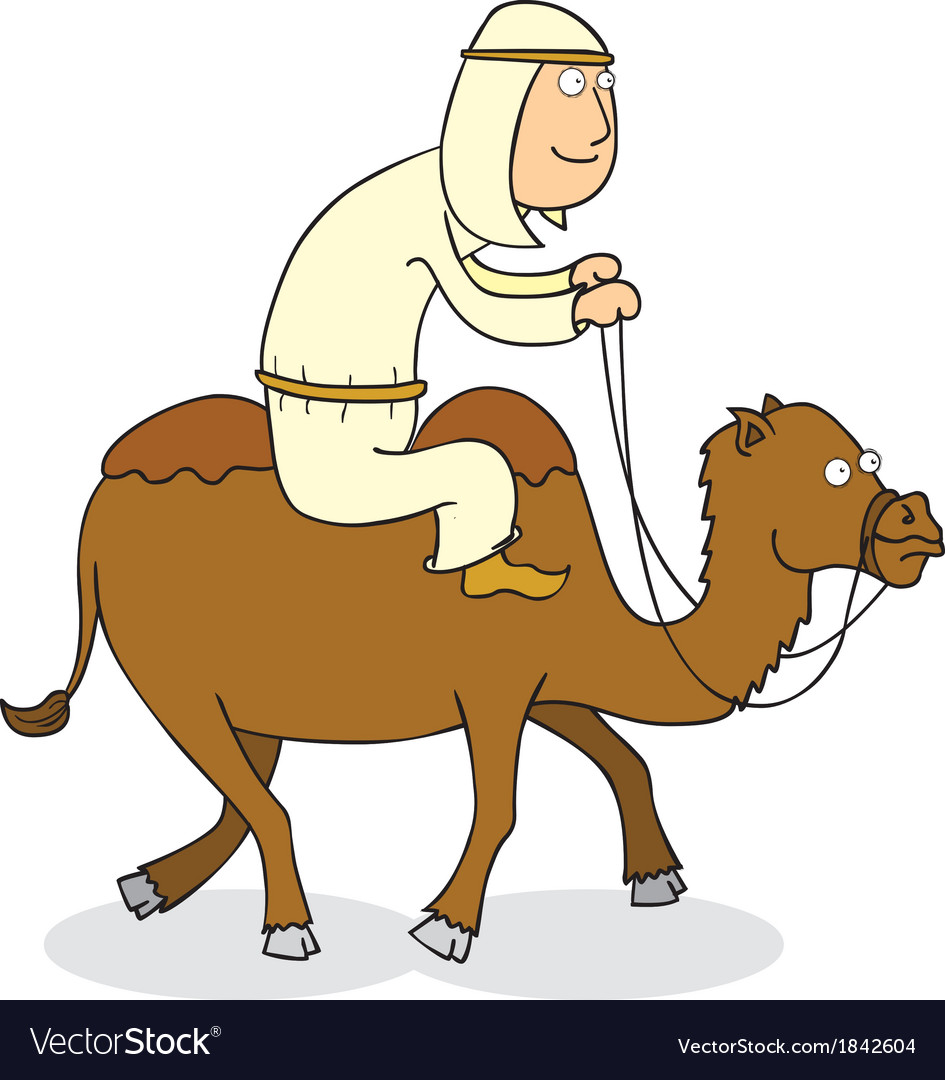 Man riding camel vector image