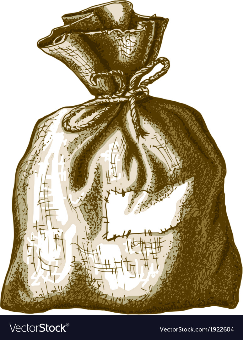 Old sack vector image