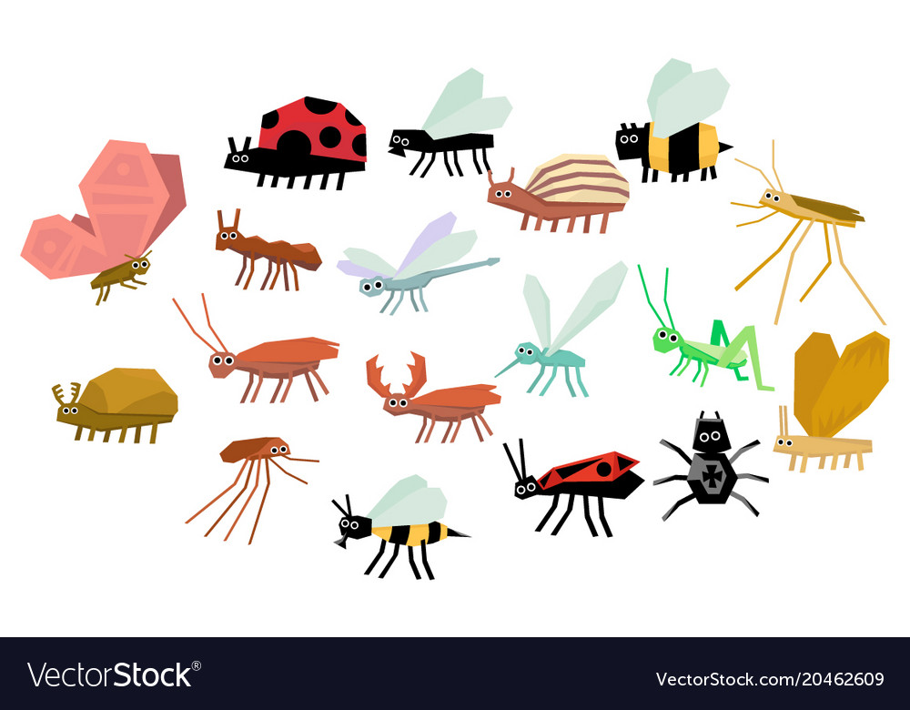Cartoon set of various funny insects mite