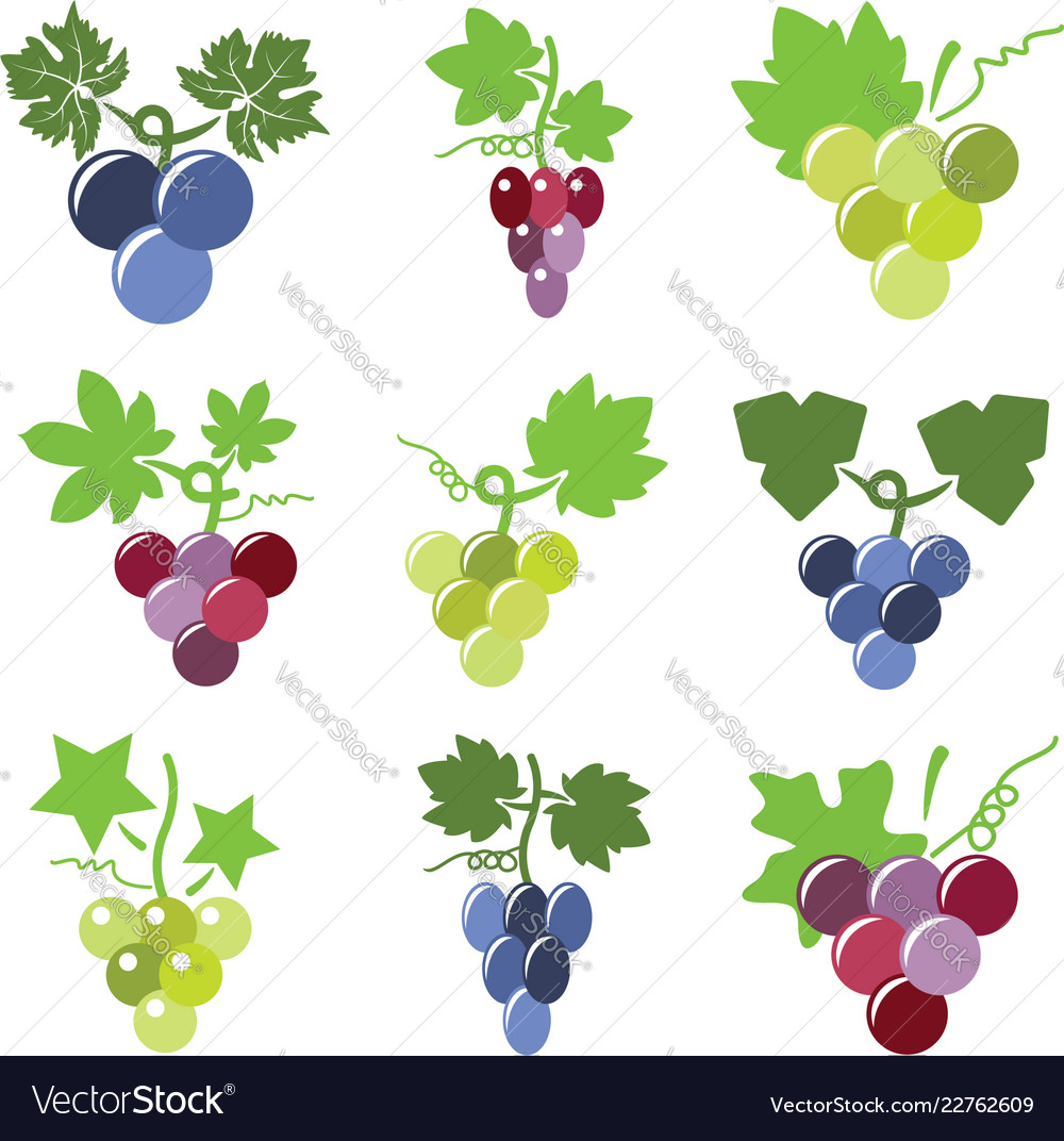 Colorful icons of grapes