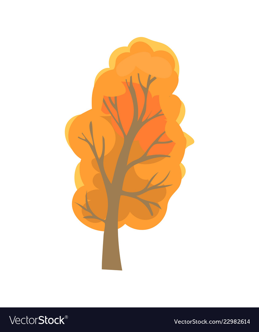 Autumn tree with dry leaves sign isolated