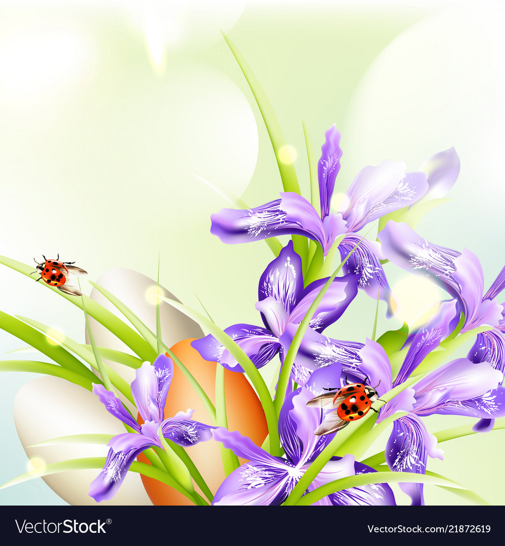 Easter greeting background with eggs and ladybugs