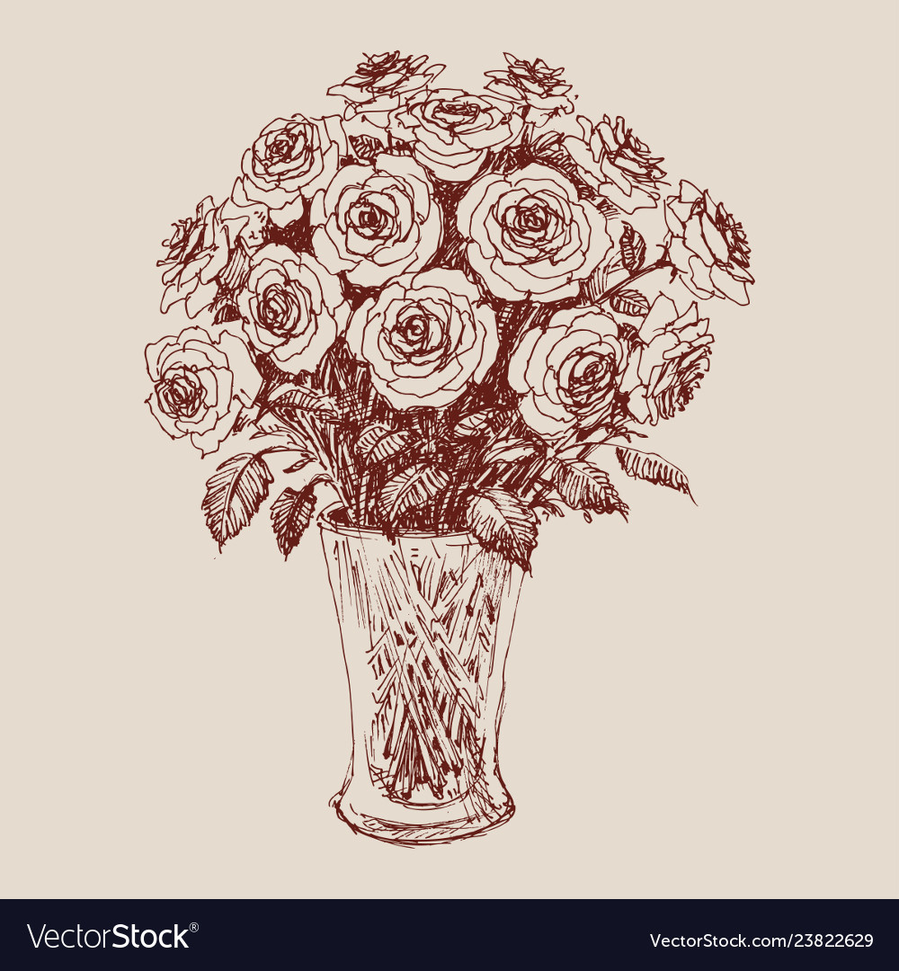 233 & A bunch of roses in a flower vase hand drawing