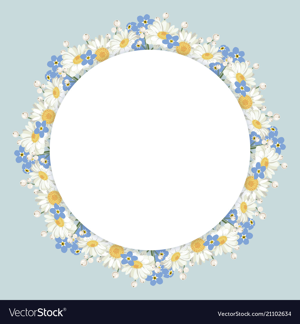 Chamomile and forget-me-not flowers frame on