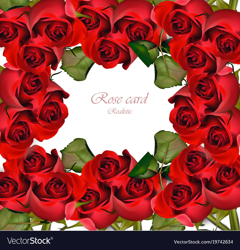 Red Roses Card Valentine Day Romantic Vector Image On Vectorstock
