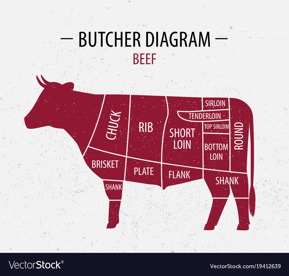 Cut of beef poster butcher diagram