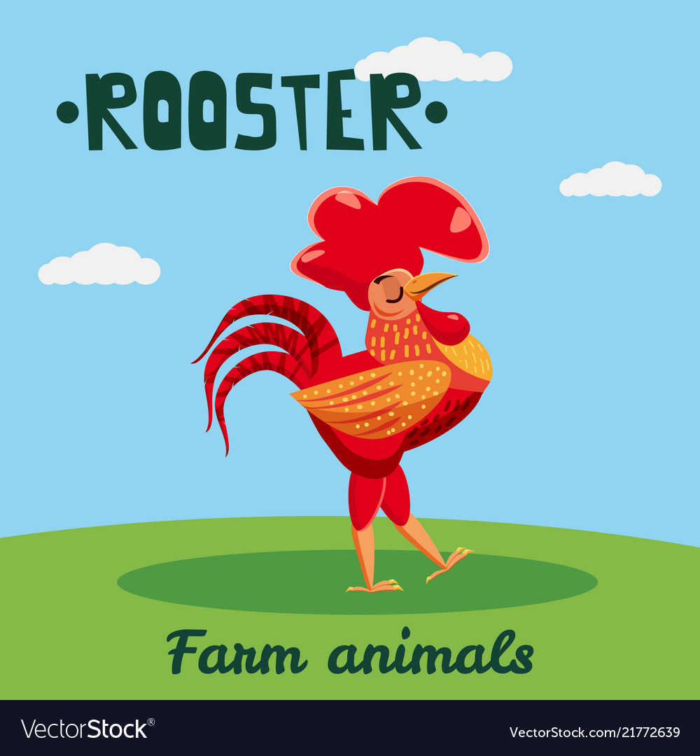 Cute rooster farm animal character farm animals