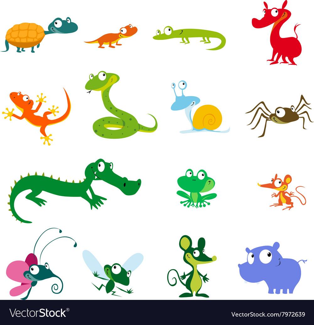 Simple animals cartoon - amphibians reptiles and