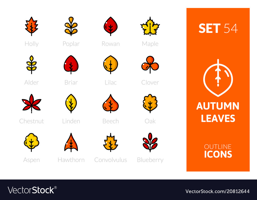 Outline color icons set in thin design style