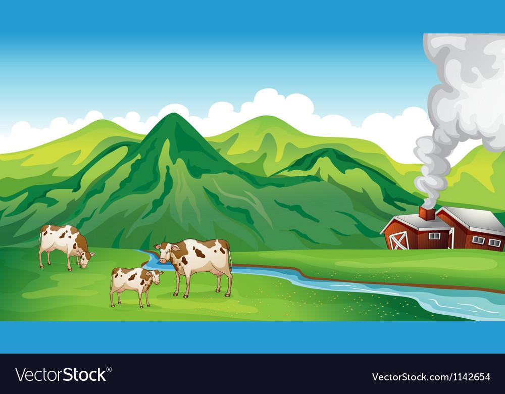 A farm house and cows vector image